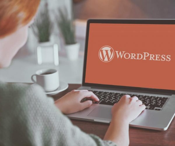 Most Used WordPress Features But Less Exploited by Bloggers