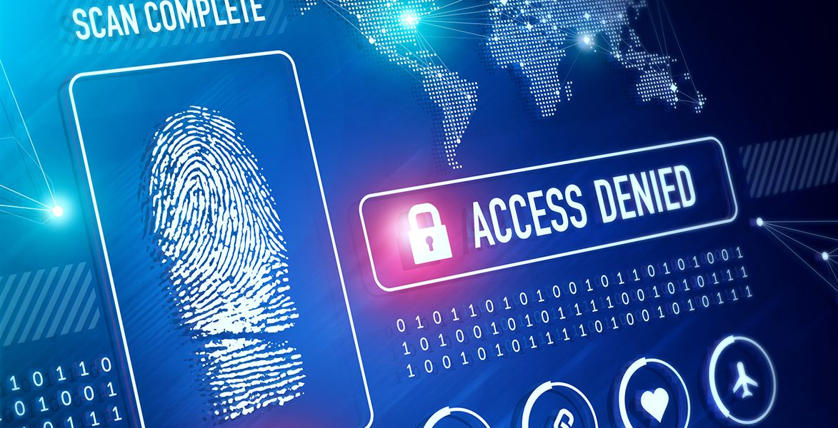 What are Snowflake Access Control Privileges?